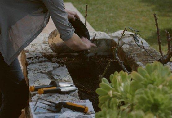 Healthy garden, healthy gardener