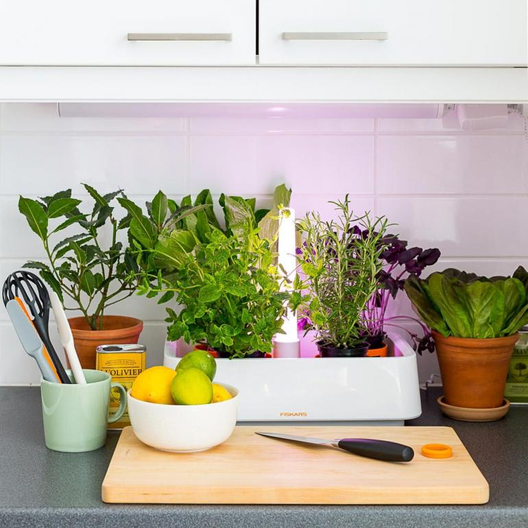 indoor kitchen garden. Indoor Kitchen Garden