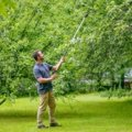 Light Pruning Snip UP69