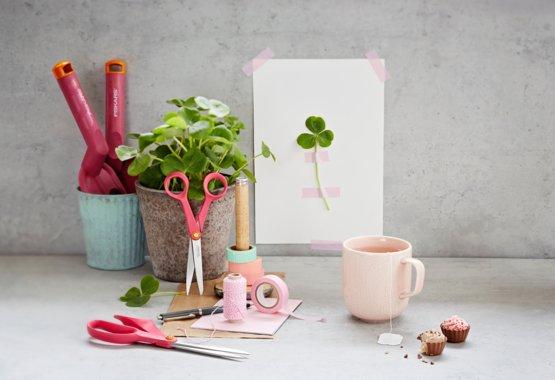 Creativity in bloom