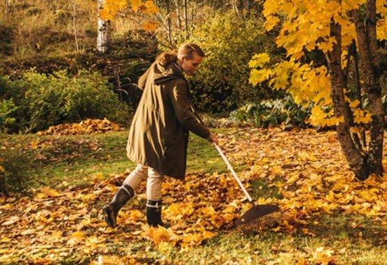 Find the joy of fall gardening