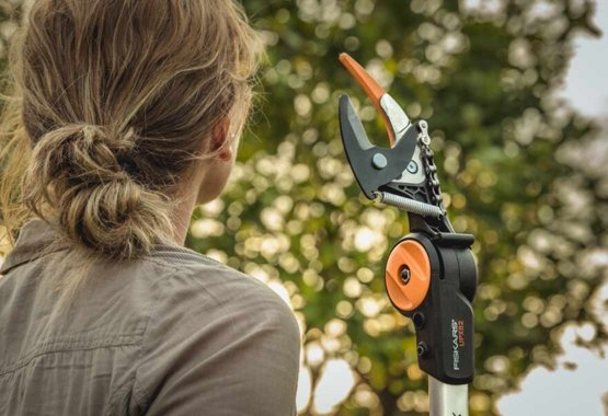 Pruners that make the cut