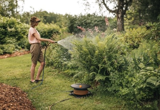 How to get started with watering